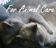 For Animal Care